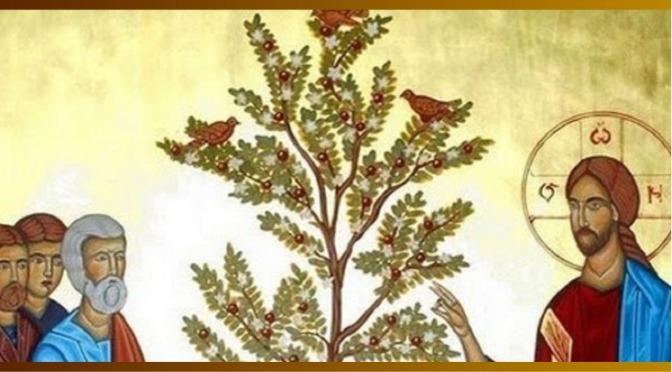 13 jun 2021 «A menor de todas as sementes torna-se a maior de todas as plantas da horta»